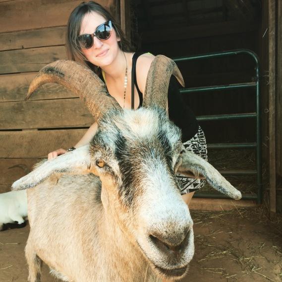Pug & Goat 4evEr